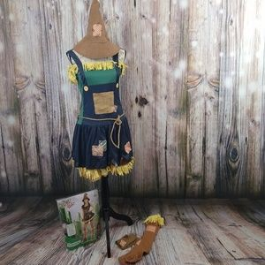 Wizard of Oz Scarecrow Costume (Juniors Lg)